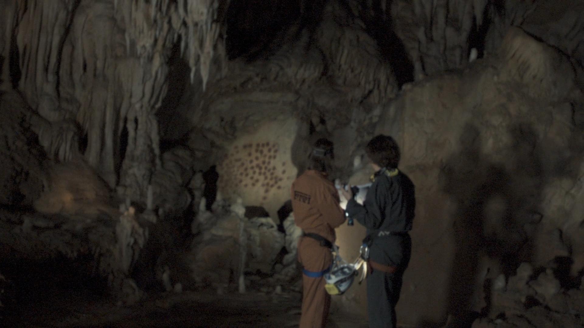 Пещера забытых снов / Cave of Forgotten Dreams (2010) BDRip 1080p