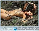 http://i6.imageban.ru/out/2013/06/17/2d4fbf169a1187bc31768c0d030de600.jpg