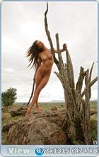 http://i6.imageban.ru/out/2013/06/17/31d33c2c128acd21a3da89fd9e943492.jpg