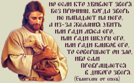 http://i6.imageban.ru/out/2013/06/24/049e1ae48719c0219d383fd7b0fcf9de.jpg