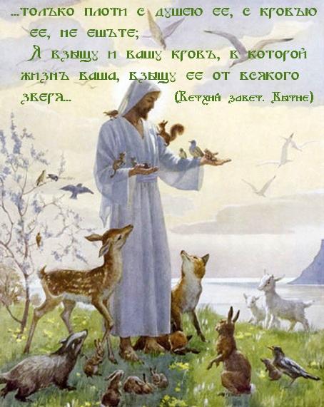 http://i6.imageban.ru/out/2013/06/24/4ee5f707bbad72a64c855da2e388e357.jpg