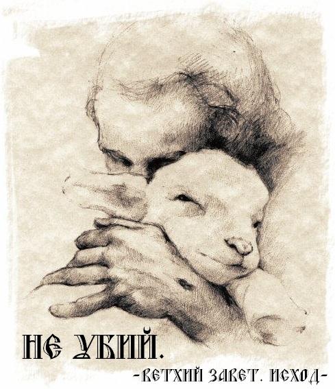 http://i6.imageban.ru/out/2013/06/24/ffce17edc137527a7dc4b86a5fc90256.jpg