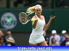 http://i6.imageban.ru/out/2013/06/25/95dc823f20906ca867454925c5c637a7.jpg