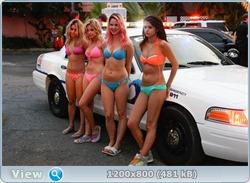 http://i6.imageban.ru/out/2013/07/01/f7f0f8d5e9c26473cf4769ceee2bc85a.jpg