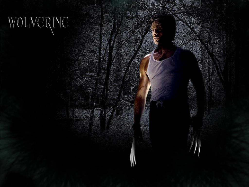 Wolverine-hugh-jackman-as-wolverine-19125639-1024-768.jpg