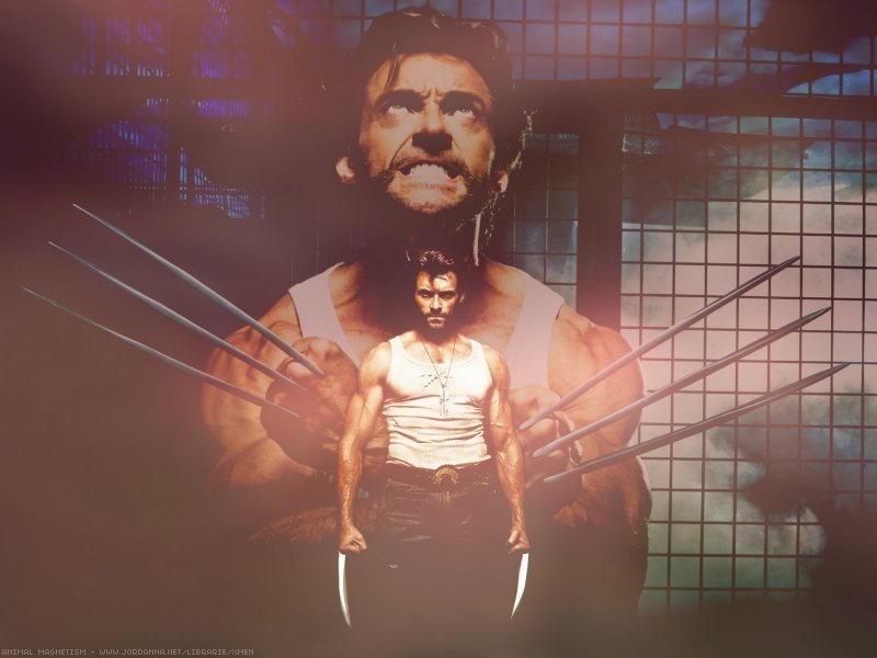 Logan-hugh-jackman-as-wolverine-19141221-800-600.jpg