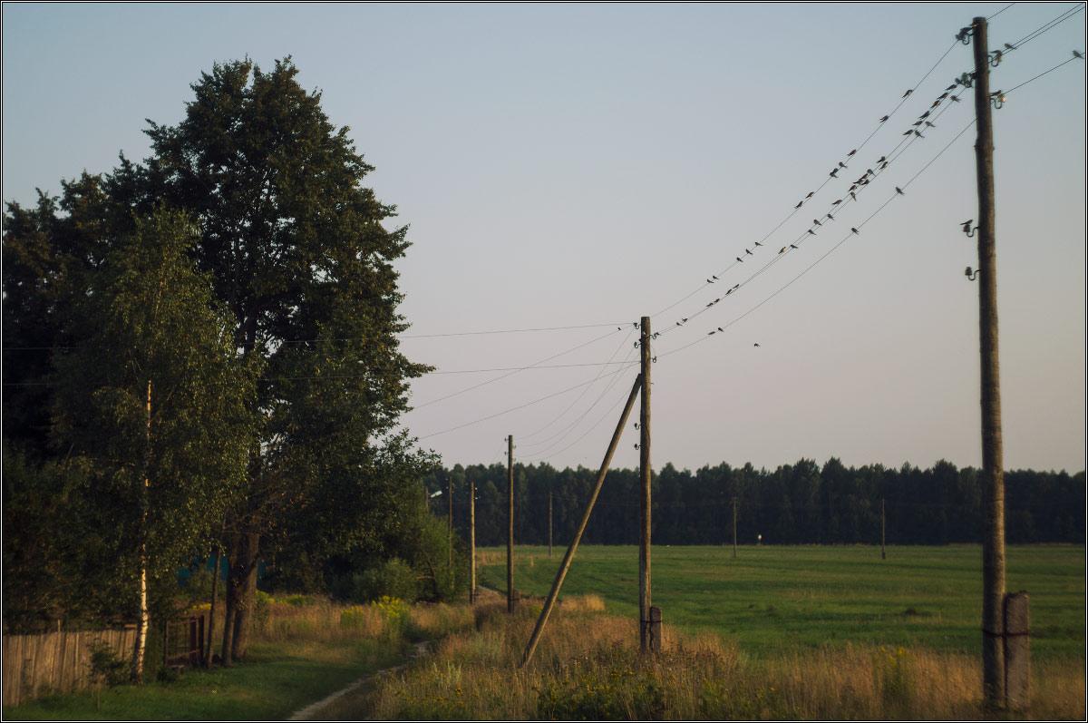 http://i6.imageban.ru/out/2013/07/29/e71d1019370b6744b62834fefe759828.jpg