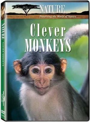 Умные обезьяны / Clever Monkeys (Марк Флетчер) [2008 г., Документальный, SATRip] ВВС