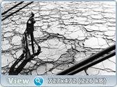 http://i6.imageban.ru/out/2013/08/13/03396c8bad147b08f5879f9ac5213050.jpg