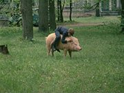 http//i6.imageban.ru/out/2013/08/21/94535bef9a9cec2ff8f5b180a63098.jpg