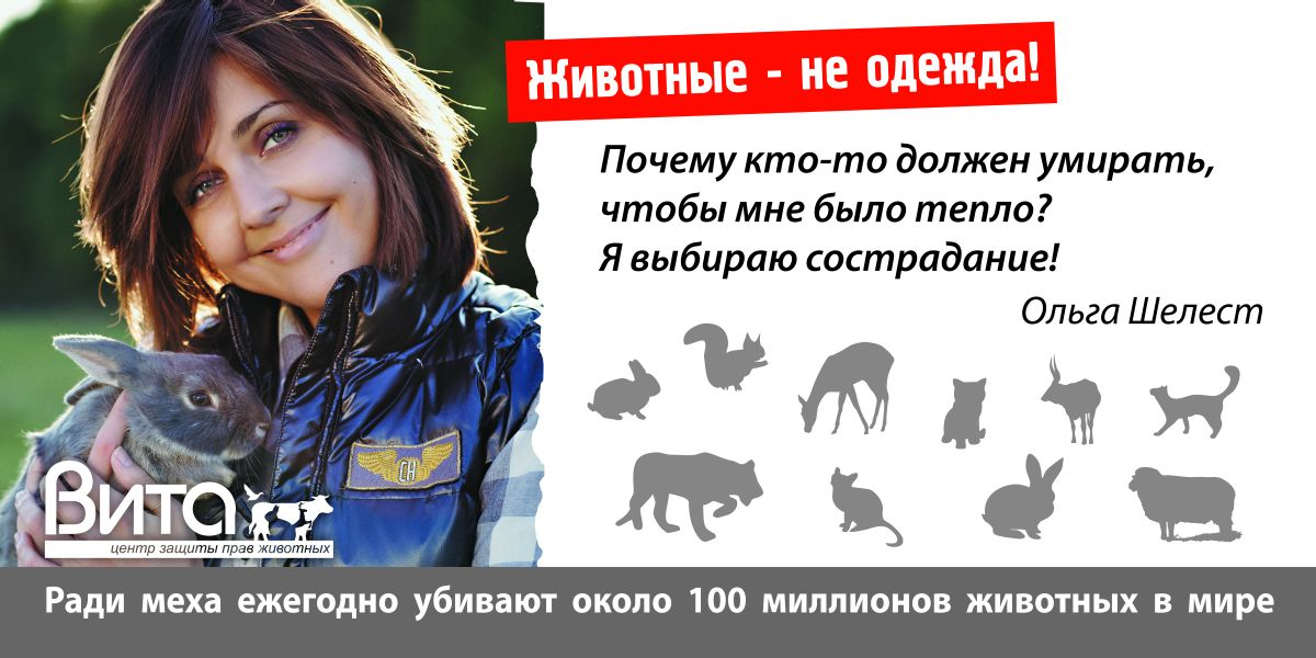 Ольга Шелест_1.jpg