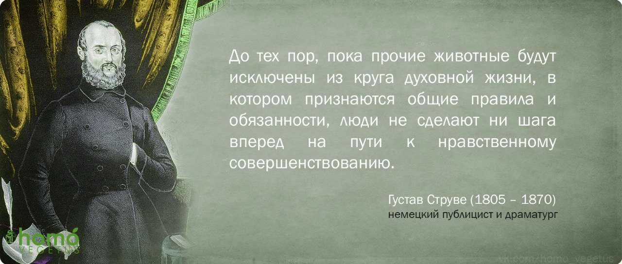 Густав Струве.jpg