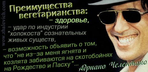 https://i6.imageban.ru/out/2013/10/10/6fc66afdc1b3be4c120632aa0c51844b.jpg
