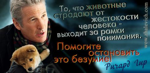 http://i6.imageban.ru/out/2013/10/10/7954d612d319c271f8b257e6e6a0d924.jpg