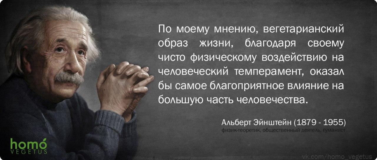 Альберт Эйнштейн_2.jpg