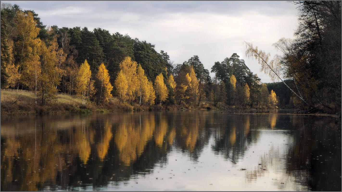 http://i6.imageban.ru/out/2013/10/21/50a7112303395ef390d60271ce35ef4e.jpg