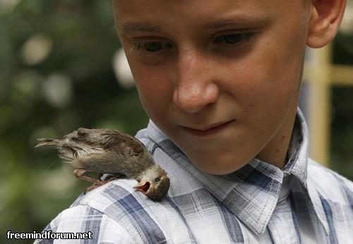 http://i6.imageban.ru/out/2013/10/29/056f390d5cb4f54d88794968954bce1d.jpg