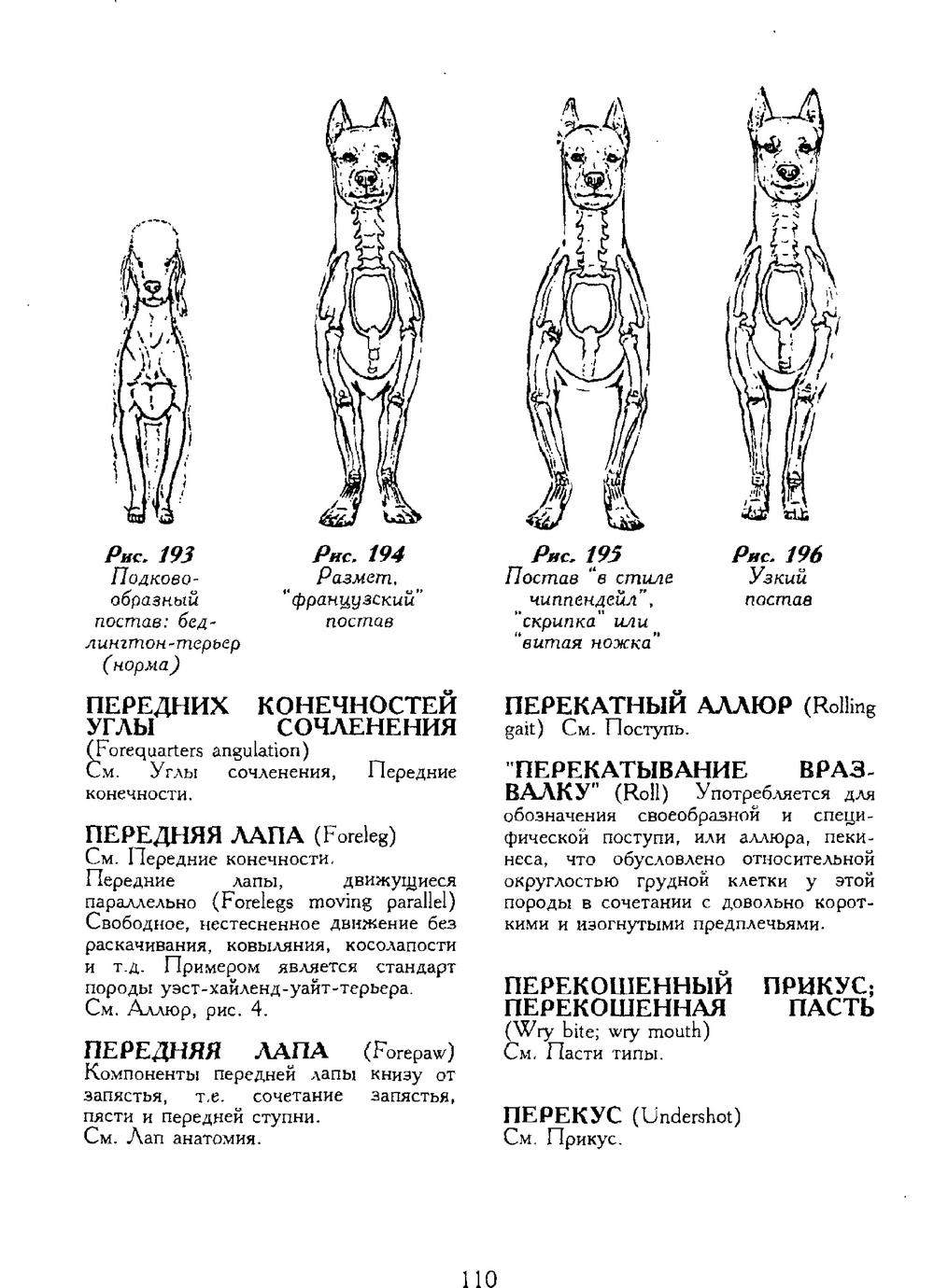 http://i6.imageban.ru/out/2013/11/25/e91138e6397a6a56195aa2028e29517b.jpg