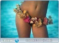 http://i6.imageban.ru/out/2013/12/14/5836fa466153bbcb4e57b5f41d0ca04a.jpg