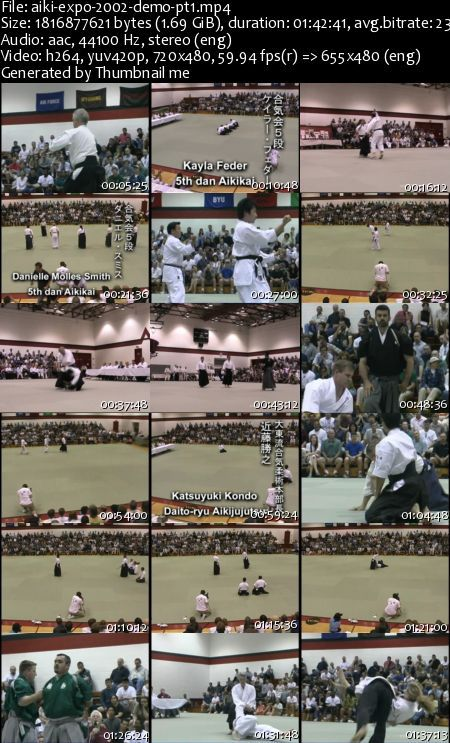 Aiki Expo 2002 Demostration