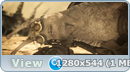 Эксойды / Exoids (2012) WEBRip 720p   60fps