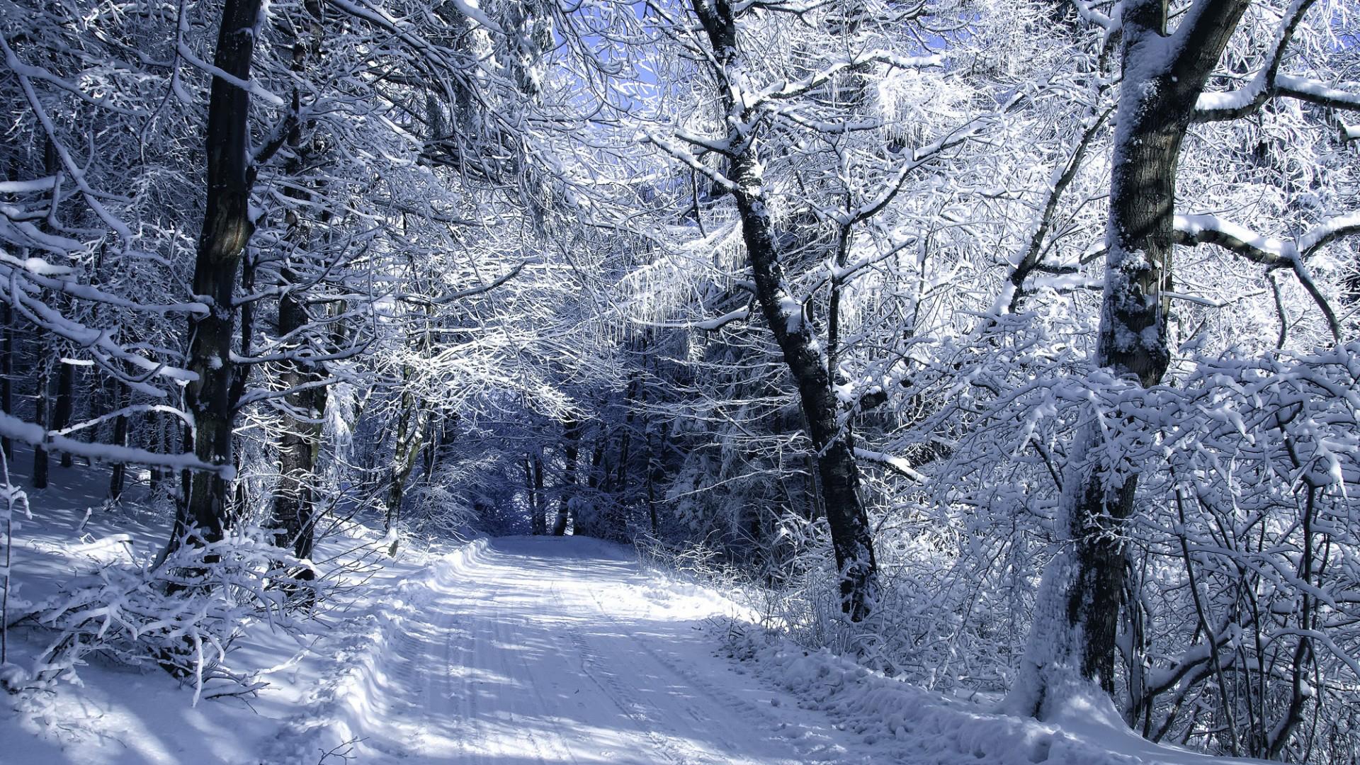 зима в городе схема в хорошем качестве