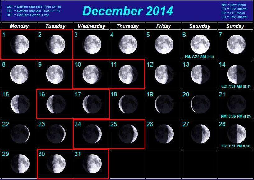 http://i6.imageban.ru/out/2014/11/26/1a0f29d0e23766418cf04a63494e17d1.jpg