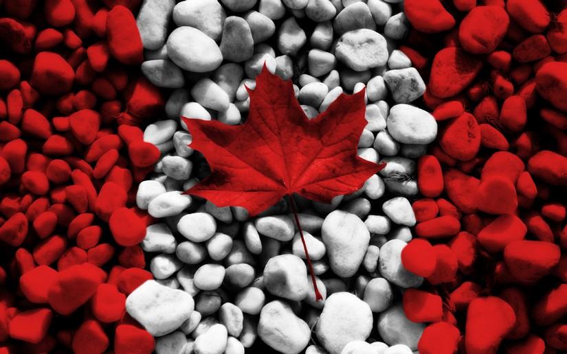 Канадский флаг 1