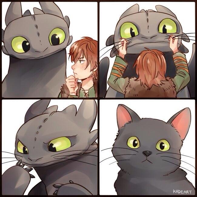 Как приручить котейку 1