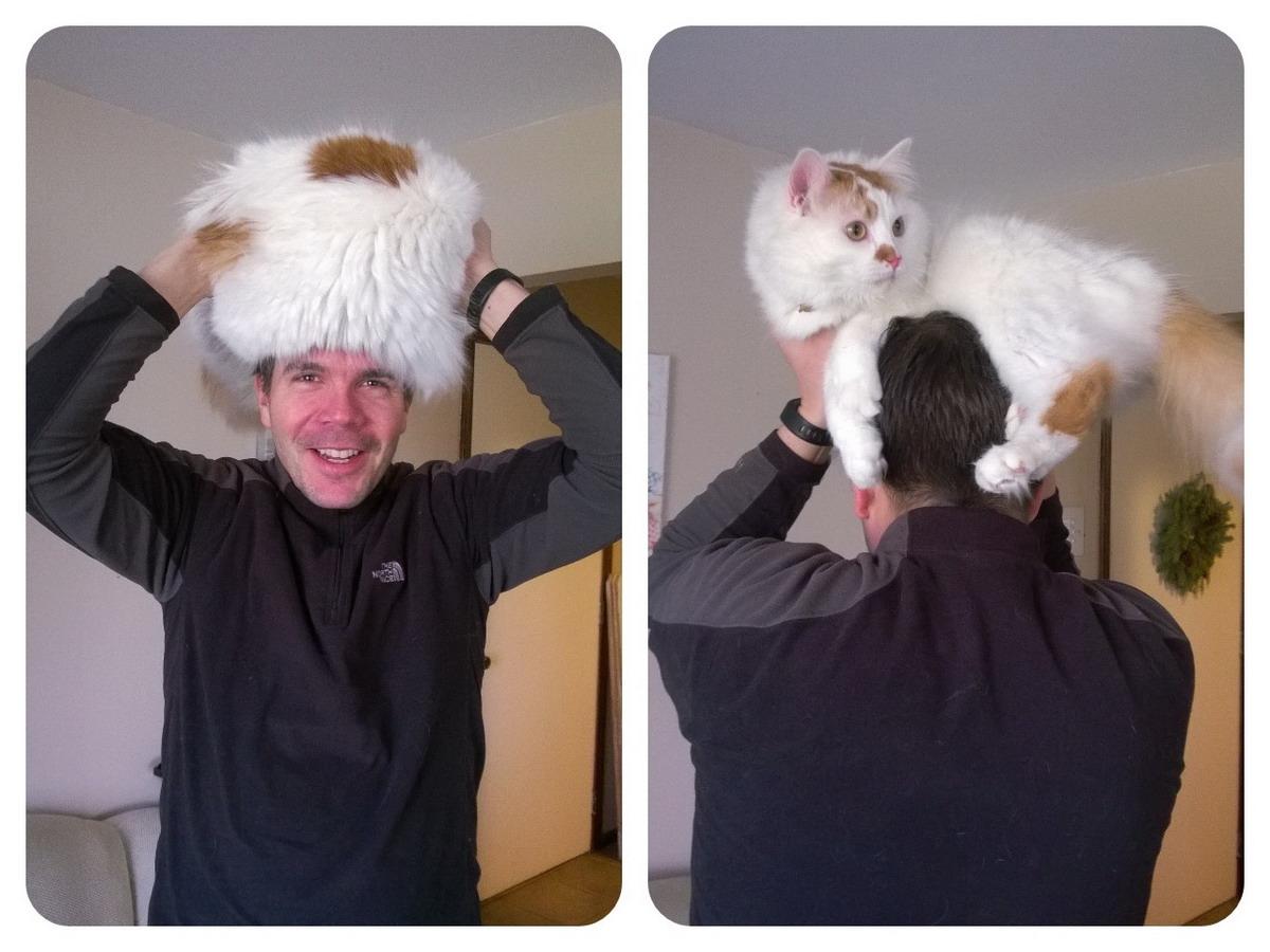 Котейковая шапка 1