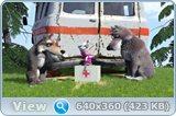 http://i6.imageban.ru/out/2014/12/29/a8682fcd6f5b09be97f70b1fd92f29eb.jpg