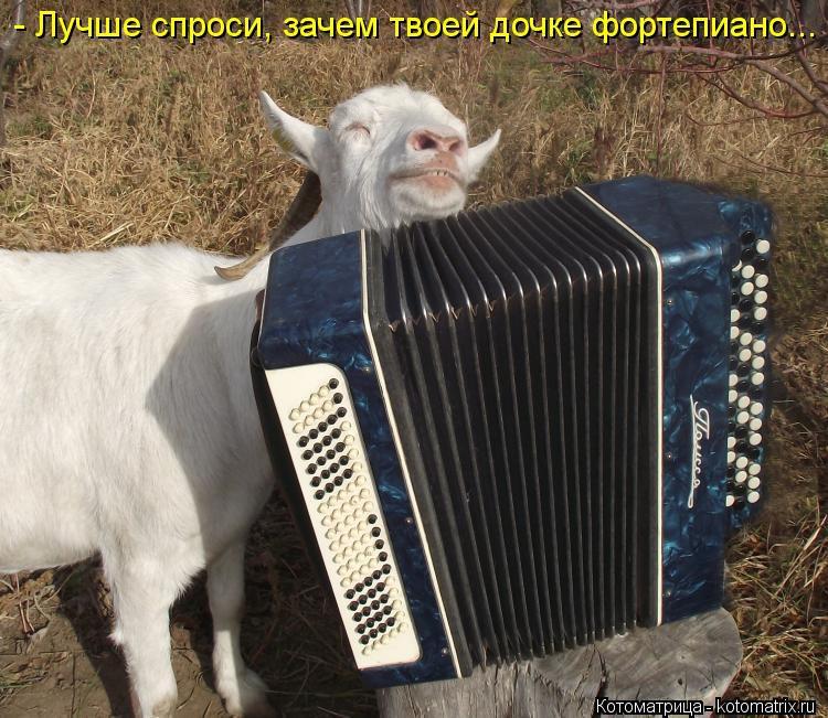 Скачать песню козы баян