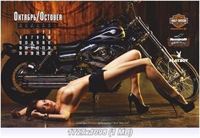 http://i6.imageban.ru/out/2015/01/11/8b7e9523d55d89581bd754a040ec6021.jpg