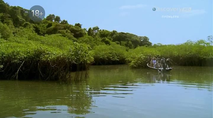 Discovery. ������ � ������ �������� / The Island with Bear Grylls (1-3 �����) (2014) HDTVRip