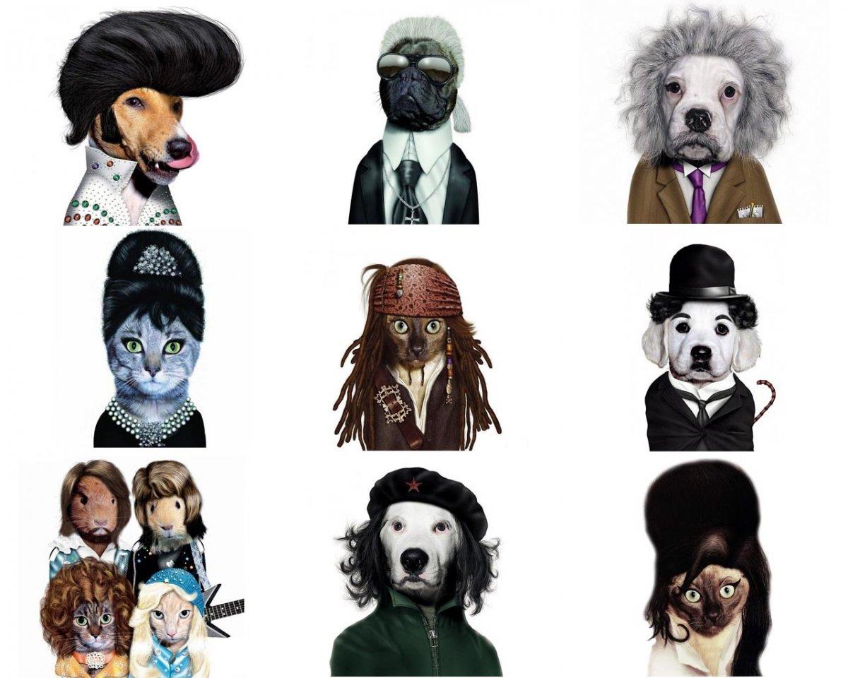 Животные в образах 1