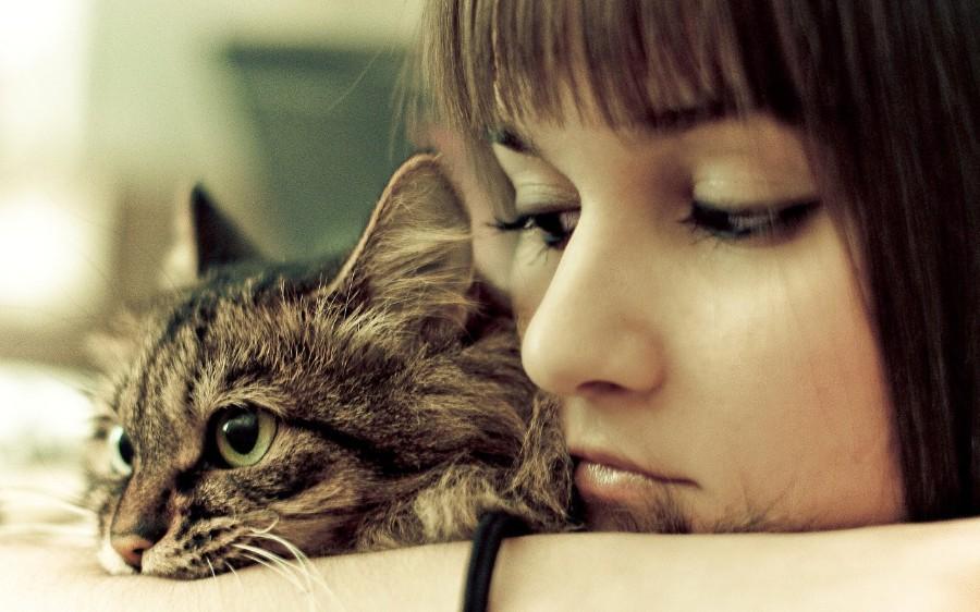 Двойной портрет с котейкой