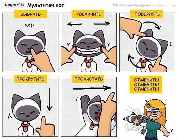 Мультитач кот 1