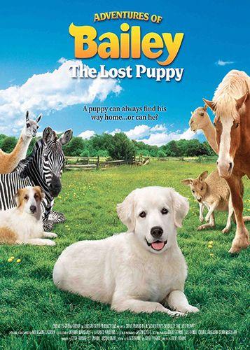 Приключения Бэйли: Потерянный щенок / Adventures of Bailey: The Lost Puppy (2010) SATRip