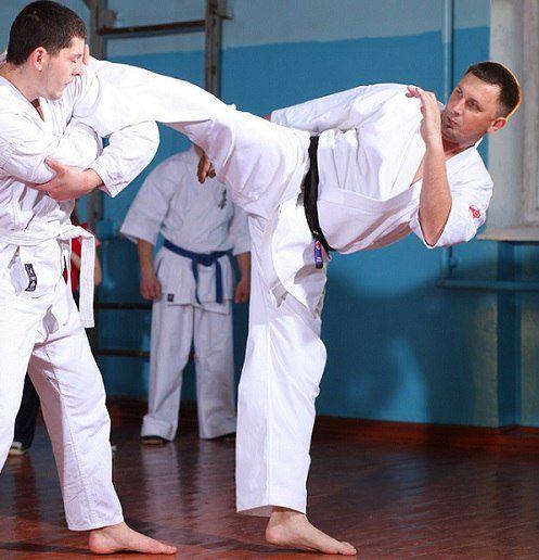 Кіокушинкай карате