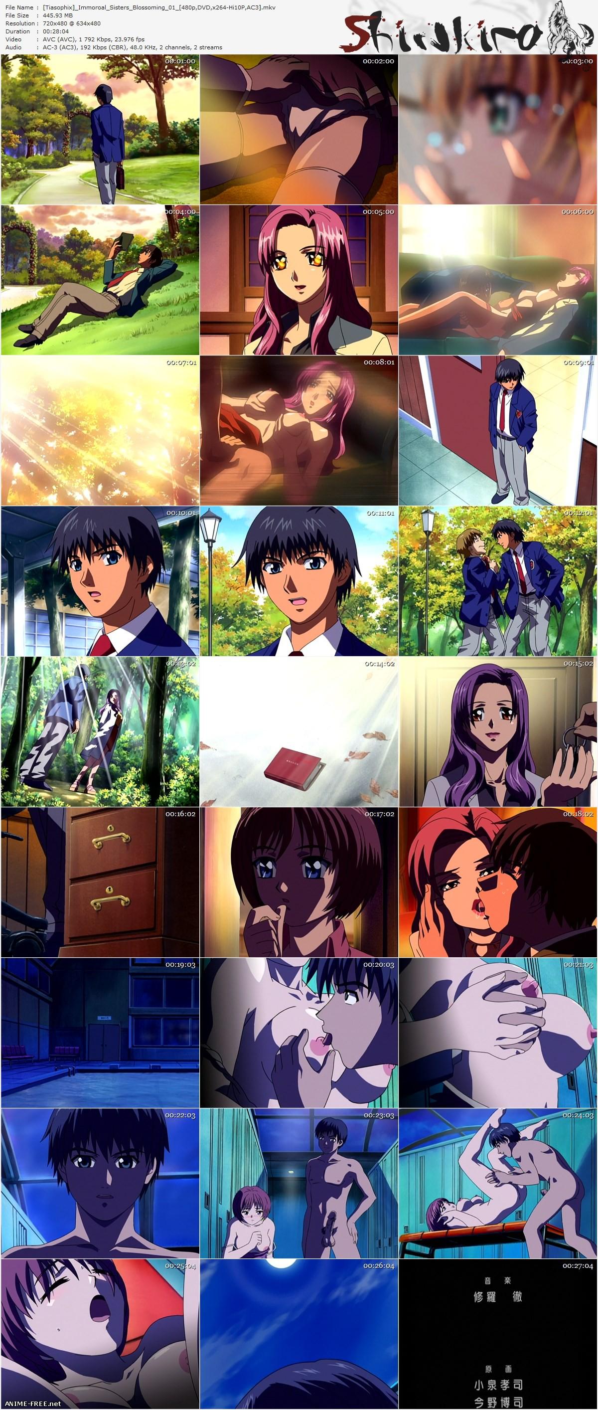 Immoral Sisters [1,2,3] / Распутные сестры [1,2,3] [7 из 7] [RUS,ENG,JAP] Anime Hentai