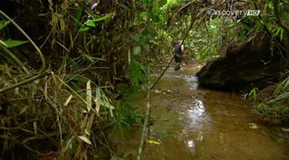 Discovery. ������ ������ / Dual Survival [4 �����] (2014) HDTVRip �� GeneralFilm