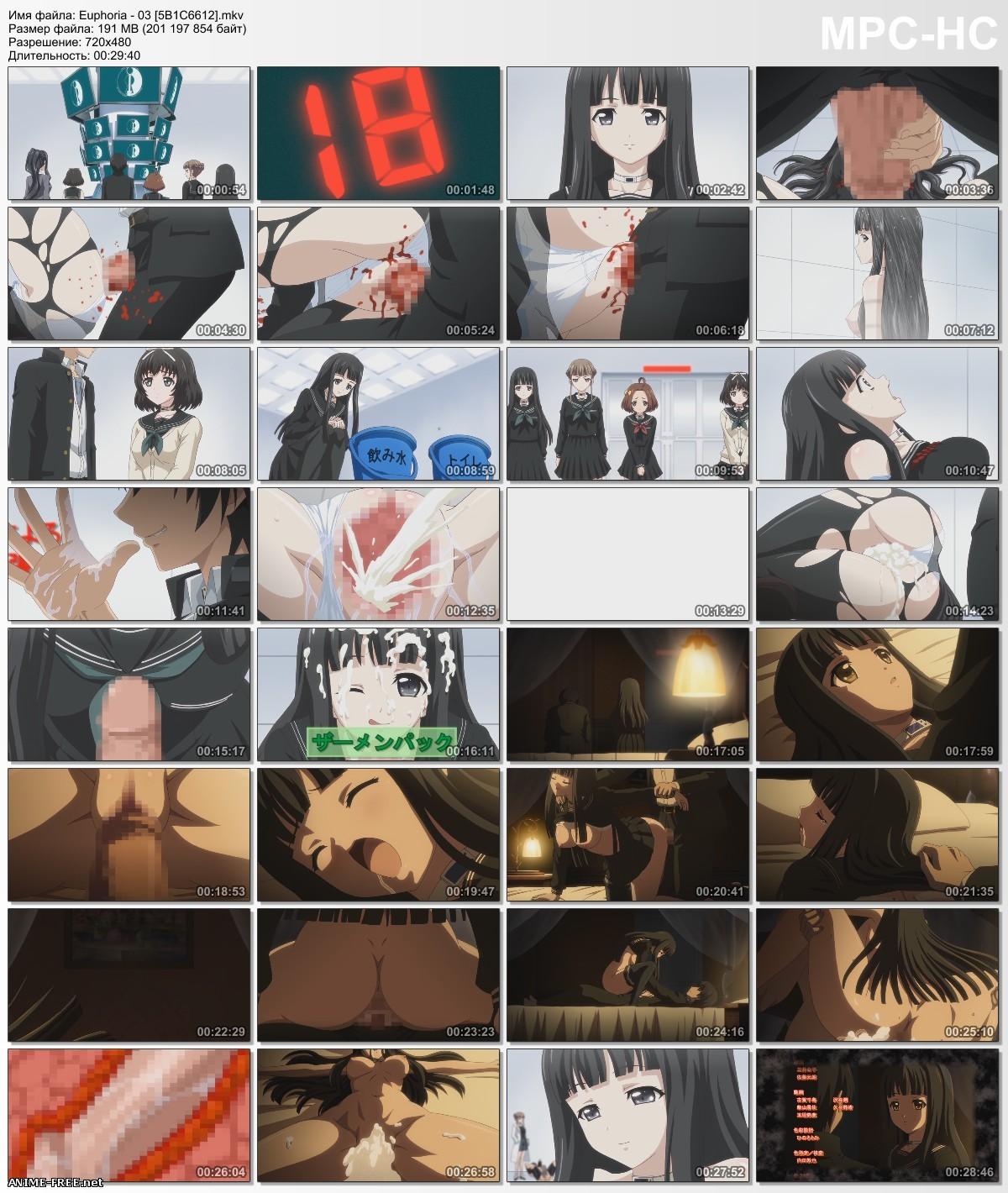 Euphoria / Эйфория: Упивающиеся страстью [6 из 6] [RUS,JAP,ENG] Anime Hentai