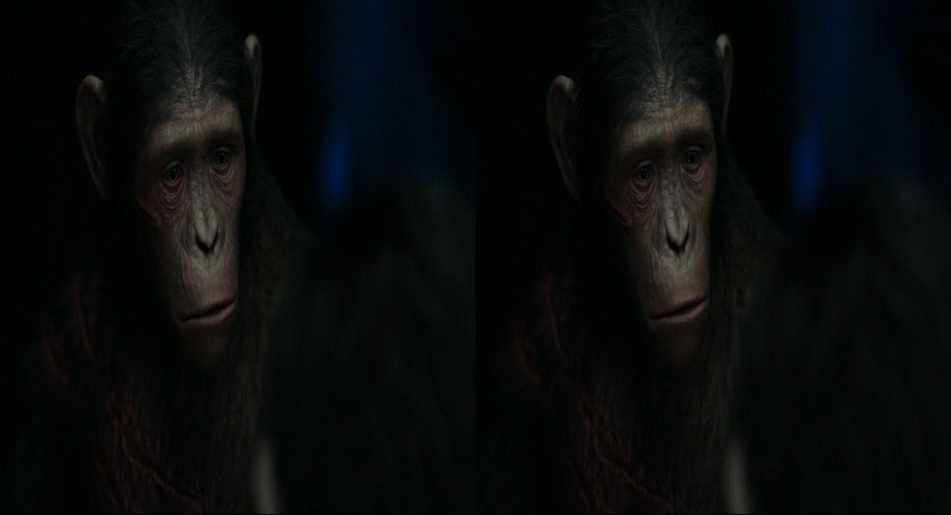 Планета обезьян: революция 3d скачать торрент.