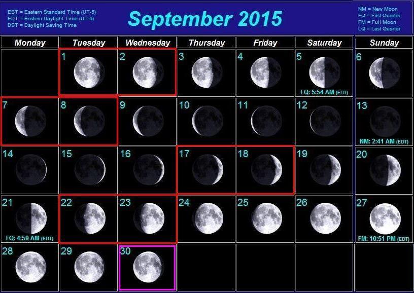 http://i6.imageban.ru/out/2015/08/12/dea3de837b45898550188b904a9cd8b9.jpg