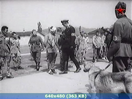 Жаворонок (1964) SATRip от New-Team
