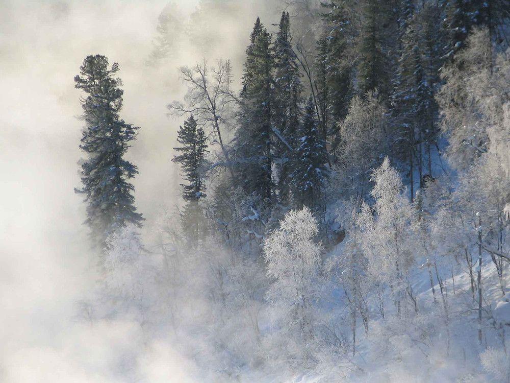 http://i6.imageban.ru/out/2015/11/19/107ecc0a53c13f2272a095428a016daa.jpg