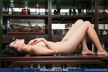 http://i6.imageban.ru/out/2015/11/30/56ef209ffa79ab461c7172ff2c714a64.png