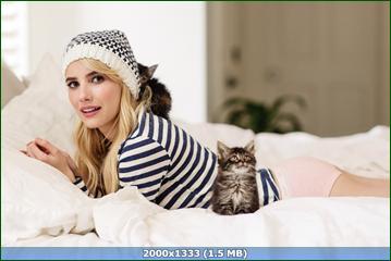 http://i6.imageban.ru/out/2015/12/05/8deab0839f5fea25f94a0c4928d21689.png