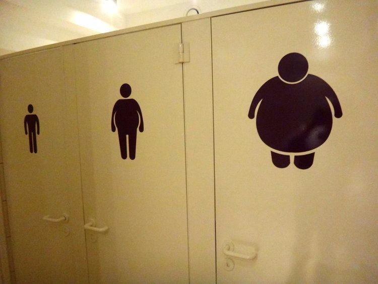 Туалеты для самых разных