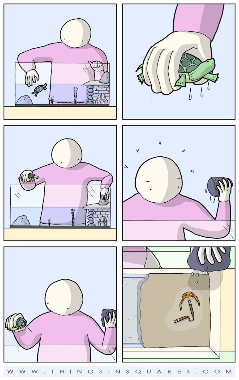 Тайна черепашки